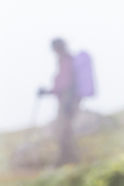 Impressionistic hiker on trail to Mount Townsend in the Buckhorn Wilderness, Olympic National Forest, Washington State, USA