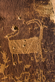 Petroglyph of Bighorn Sheep, vandalized by bullet holes, in Nine Mile Canyon, Utah, USA