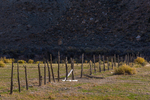 Barbed wire fence for cattle in Nine Mile Canyon, Utah, USA
