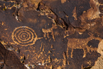Petroglyph panel with two game animals and concentric circles in Nine Mile Canyon, Utah, USA