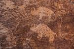 Bison petroglyphs in Nine Mile Canyon, Utah, USA