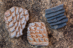 Potsherds in corrugated style left by the Ancestral Puebloan people living at Big Ruin within Salt Creek Canyon in The Needles District of Canyonlands National Park, Utah, USA