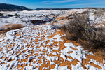 Dune landscape after a spring snowfall in Coral Pink Sand Dunes State Park, Utah, USA