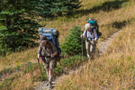 Backpackers Karen Rentz and Joan Michaels on Grand Pass Trail during a backpacking trip into Grand Valley in Olympic National Park, Washington State, USA [No model releases; available for editorial licensing only]