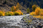 West Fork Walker River in the Humboldt-Toiyabe National Forest, California, USA, Humboldt_Toiyabe_NF-1