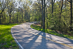 Winding road curving through the spring forest in the Appalachian Mountains of Tennessee, USA, April, 2008_TN_3116