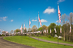 American flags fly at Fort Custer National Cemetery, a national cemetery where military veterans are buried, near Augusta and Battle Creek, Michigan, USA, 2008_MI_3383