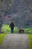 Woman and dog walking in the Washington Park Arboretum, University of Washington, Seattle, Washington State, USA, March, Seattle_Arboretum_Detail-7