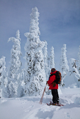 Snowshoer (Karen Rentz, spouse of photographer) in subalpine forest of trees thickly covered with rime ice , on Hurricane Ridge, Olympic National Park, Washington State, USA, Hurricane_Ridge_Winter-164
