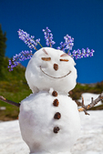 Snowman created on a remnant snowfield along the Pacific Crest Trail, using natural materials such as lupine for hair and Mountian Hemlock cones for buttons, Snowgrass Flats, Goat Rocks Wilderness, Gifford Pinchot National Forest, Cascade Mountains, Washington State, USA, September, Goat_Rocks-38