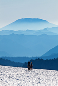 Hikers on the Pacific Crest Trail in the Goat Rocks Wilderness, with Mount St. Helens, partially obscured by wildfire smoke, towering behind, Gifford Pinchot National Forest, Cascade Mountains, Washington State, USA, September, Goat_Rocks-39