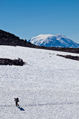 Thru-hiker on the Pacific Crest Trail crosses a remnant snowfield below Old Snowy, with the top of Mount Adams appearing behind, in the Goat Rocks Wilderness, Gifford Pinchot National Forest, Cascade Mountains, Washington State, USA, September, Goat_Rocks-514