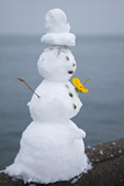 Little snowman with pansy corsage, made from the wet snow of a rare January snowstorm in Seattle, with Elliot Bay of Puget Sound behind, Washington State, USA, Seattle_Snowfall-194