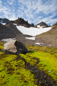 Mossy creekbed near timberline in Royal Basin, a rugged glacial cirque in Olympic National Park, Washington State, USA.