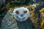 Smiley Face snowman made by Karen Rentz of natural materials in The Enchantments, Cascade Range, Okanogan-Wenatchee National Forest, Washington State, USA