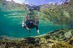 Karen Rentz exploring the Kapoho Tide Pools (Wai'opae Tidepools Marine Life Conservation District), south of Hilo, Hawaii, USA
