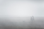 Man and woman walking their little dog together in heavy fog off the Pacific Ocean along the boardwalk on Laguna Point, MacKerricher State Park near Fort Bragg along the California coast, USA