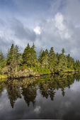 Reflections in Siltcoos Lagoon in Oregon Dunes National Recreation Area near the mouth of the Siltcoos River, Siuslaw National Forest, Oregon, USA