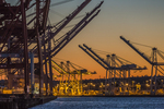 The container cranes of Terminals 46 and 18 at the Port of Seattle Seaport, Seattle, Washington State, USA