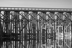The Pudding Creek Trestle, now part of the Ten Mile Beach Trail along the Pacific Ocean near Fort Bragg, was once a railroad trestle used in hauling logs and supplies, MacKerricher State Park, California, USA