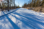 Long late afternoon tree shadows crossing a snowy country road in Mecosta County near Big Rapids and Stanwood, Michigan, USA
