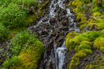 Tiny cascade of water along the trail to Buckhorn Pass in the Olympic Mountains, Olympic National Forest, Olympic Peninsula, Washington State, USA