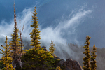 Clouds rising out of the Upper Dungeness River Valley past this viewpoint at Buckhorn Pass, Olympic National Forest, Olympic Mountains, Olympic Peninsula, Washington State, USA