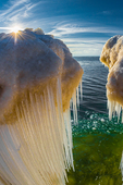 Icicles formed from spray of Lake Michigan waves crashing in,  Rosy Mound Natural Area near Grand Haven, Michigan, USA