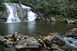 66745-01504 Indian Creek Falls at Deep Creek Great Smoky Mountain National Park NC