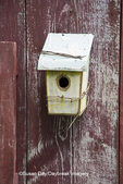 63821-23019 Birdhouse on old red garden shed, Marion Co., IL