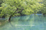 65045-01106 Big Spring, Ozark National Scenic Riverways near Van Buren, MO