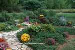 63821-127.17 Fall Garden - stone path, purple chair, pumpkins & bird bath in flower bed  Marion Co.  IL