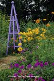 63821-17618 Purple Obelisk Homestead Purple Verbena, Orange Cosmos, Yellow Coneflowers, Mexican Flame Vine, Double Gloriosa Daisy, IL