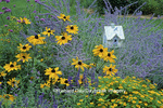 "63822-00407 Bird House in bird flower garden - Russian Sage, Melampodium ""Million Gold"", Indian Summer Rudbeckia, Blue Vic. Salvia"