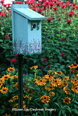 63822-00709 Bird House, Gloriosa Daisy (Rudbeckia hirta pulcherrima), Red Bee Balm (Monarda didyma) Marion Co. IL