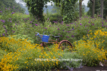 63821-23303 Flower gardens with old bicycle and deck, Marion Co, IL (PR)