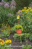63821-23401 Flower garden with Black-eyed Susans (Rudbeckia hirta), Joe Pye Weed  (Eutrochium purpureum), green chair and birdhouse, Marion Co., IL (PR)