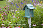 63821-23403 Blue birdhouse in flower garden with Purple Coneflowers and salvias, Marion Co., IL