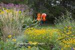 63821-23503 Flower garden with Karl Foerster Grass, Black Eyed-Susans, Joe Pye Weed, Marion Co., IL (PR)