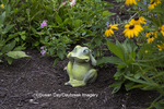 63821-23504 Ornamental frog in flower garden with Black Eyed-Susans and pink lantana, Marion Co., IL