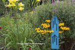 63821-23507 Blue butterfly house in flower garden with  Black-eyed Susans and Yellow Daylilies,  Marion Co., IL