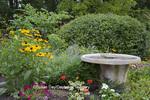 63821-23520 Birdbath in flower garden (Black-eyed Susans, Million Bells, Geraniums)  Marion Co., IL (PR)