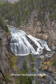 67545-09707 Gibbon Falls at Yellowstone National Park, WY