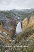 67545-09810 Lower Falls, Yellowstone National Park, WY
