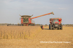 63801-07209 Soybean harvest with Case IH combine in Marion Co. IL