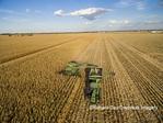 63801-08206 Corn Harvest, John Deere combine unloading corn into grain cart while harvesting - aerial Marion Co. IL