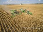 63801-08302 Corn Harvest, John Deere combine unloading corn into grain cart while harvesting - aerial Marion Co. IL