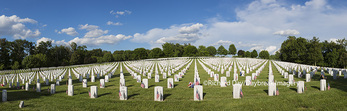 65095-02101 Flags on Memorial Day at Jefferson Barracks National Cemetery, St Louis, MO
