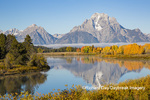 67545-09208 Oxbow Bend in fall,  Grand Teton National Park, WY