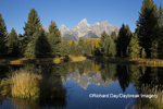 67545-09505 Sunrise at Schwabacher Landing in fall, Grand Teton National Park, WY